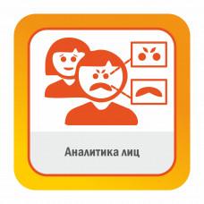Модуль ПО Аналитика лиц